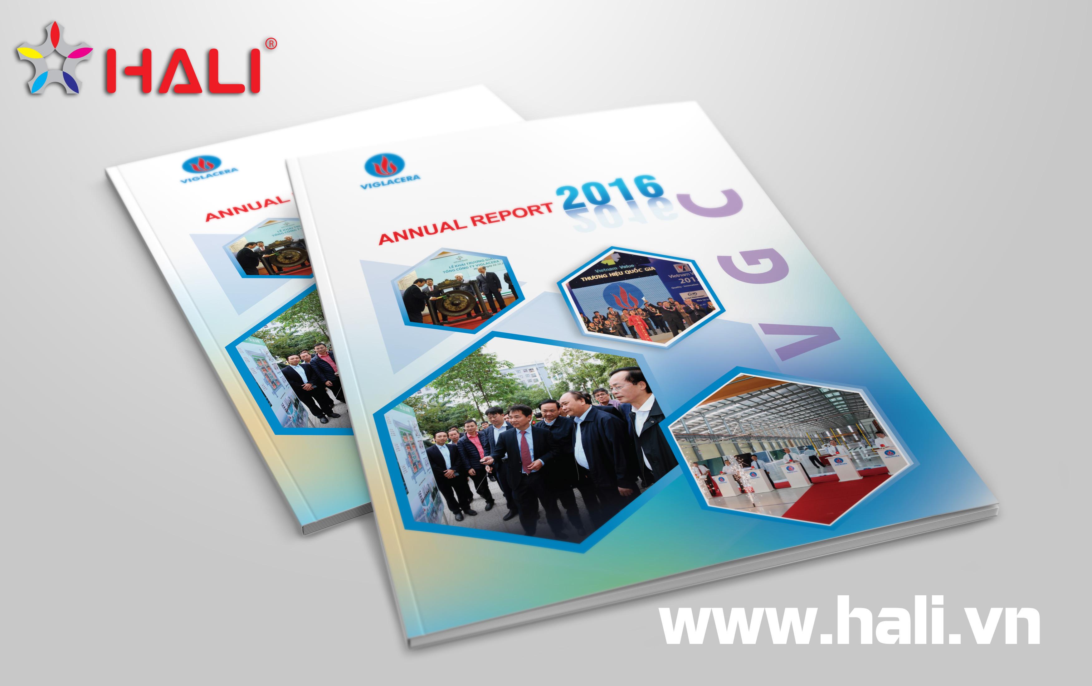 Báo cáo thường niên 2016 VGC 01