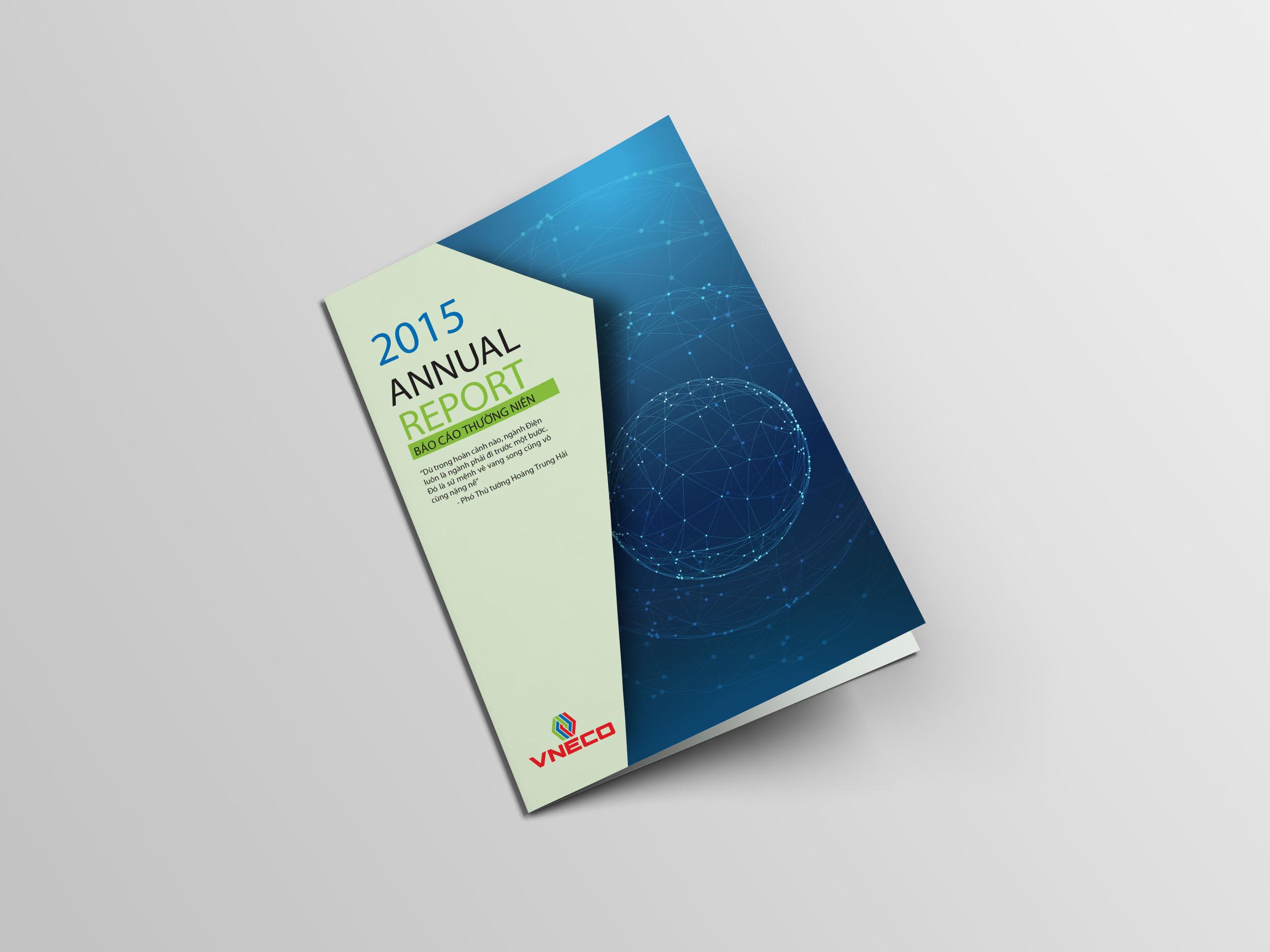 Thiết kế Báo cáo thường niên VINECO 01